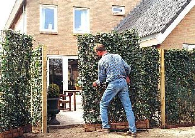Zeer Jan den Hertog - Tuinplanten Boskoop BT96
